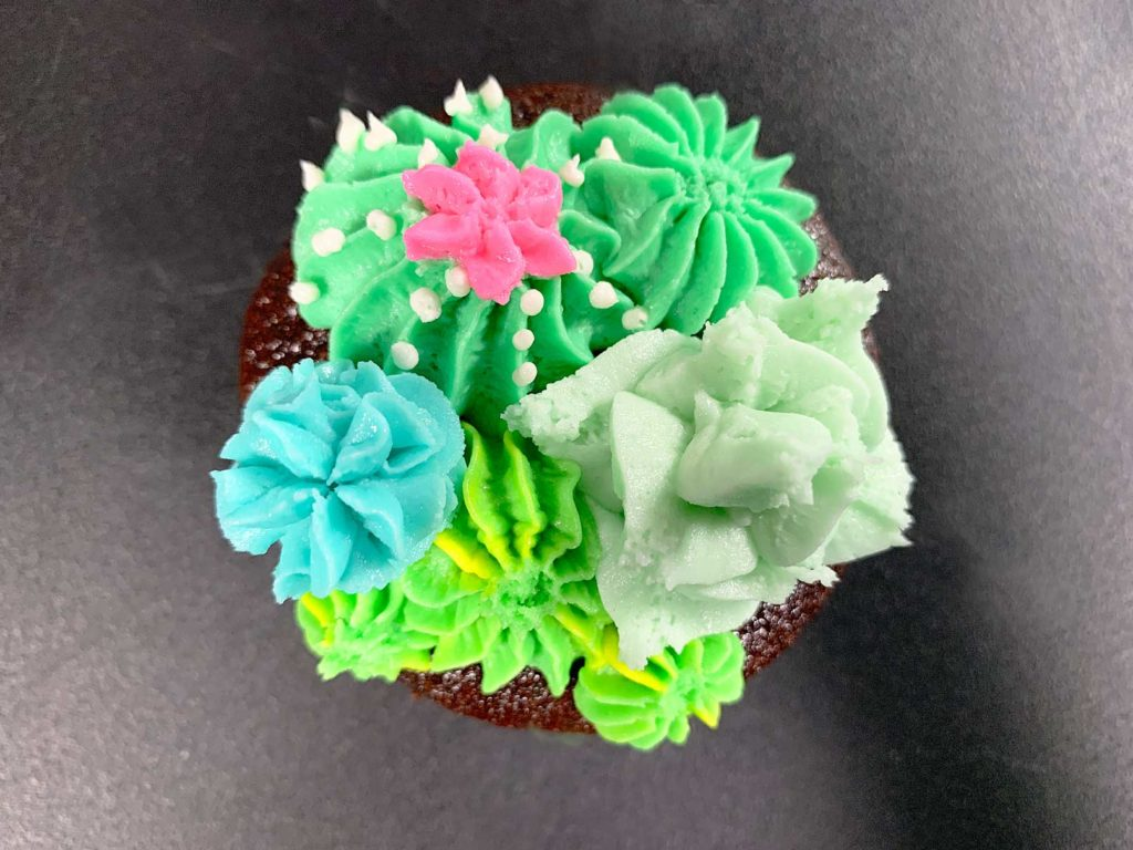 close up detail of a cupcake with buttercream cacti and succulents