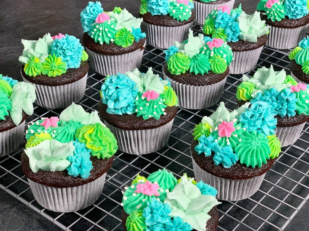 sideview of cupcakes with buttercream cacti and succulents