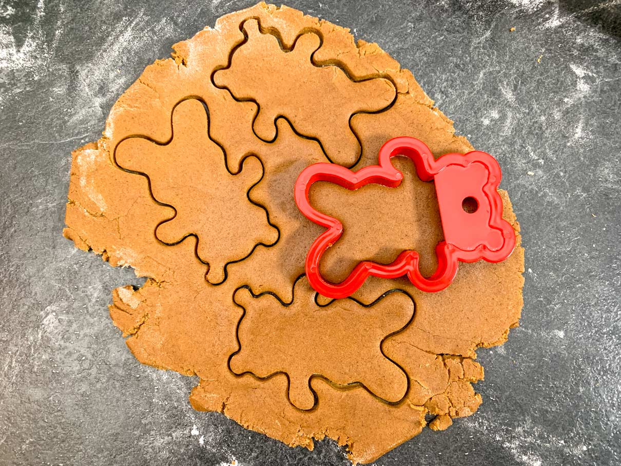 rolled out gingerbread dough with teddy bear shapes cut out of it
