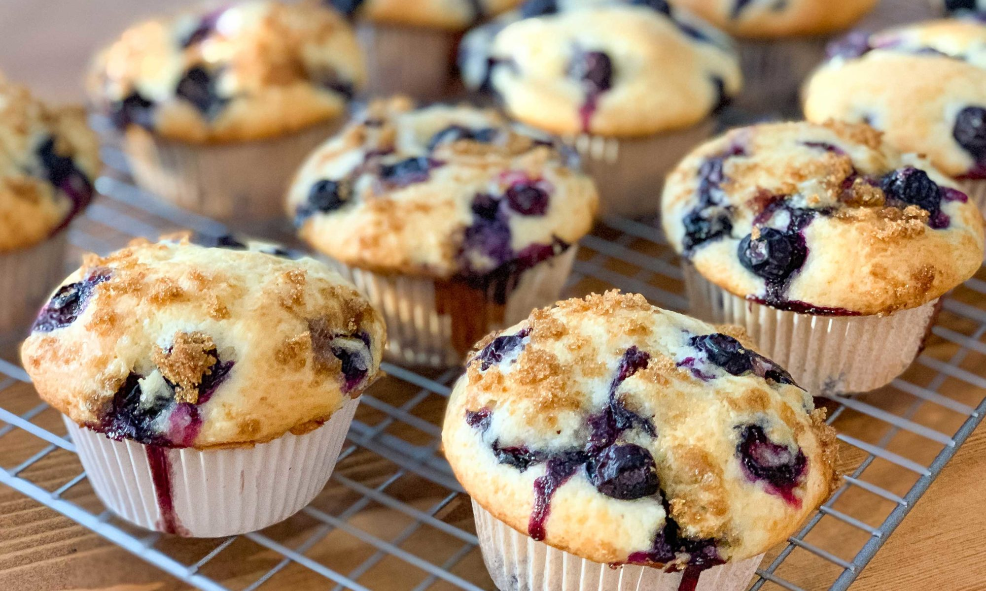 side angle of fresh baked blueberry muffins, cooling on a wire rack